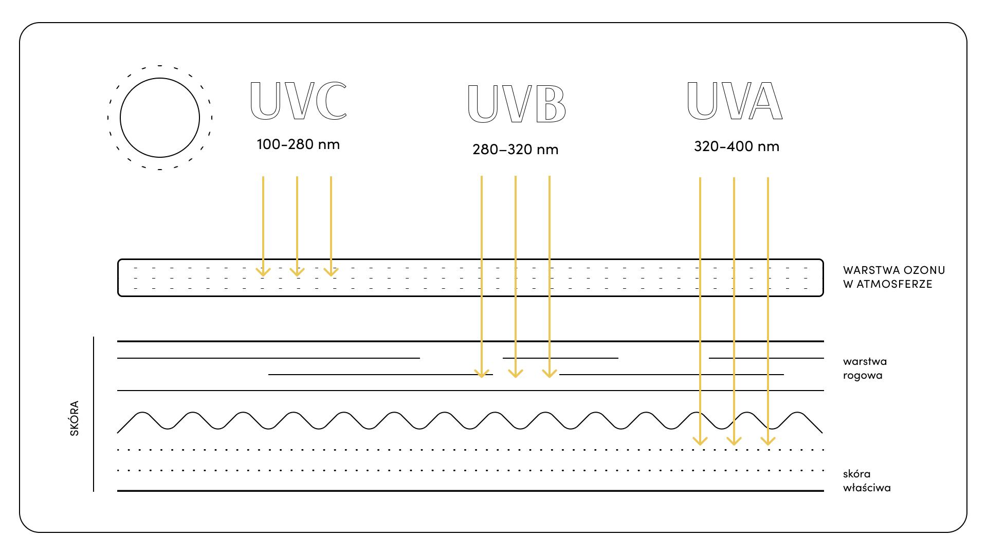 Promieniowanie UV i jego wpływ na skórę